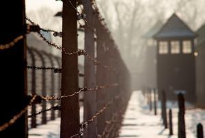 SHOA: ESTUDIO DEL HOLOCAUSTO EN EL AULA (Edición 1)
