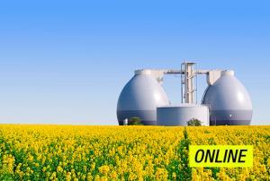 Gas renovable. El futuro de la energía y el medioambiente. (Edición 1)