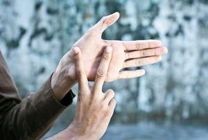 Iniciación a la Lengua de Signos Española en el Ámbito Educativo. 1.1 (Edición 1)