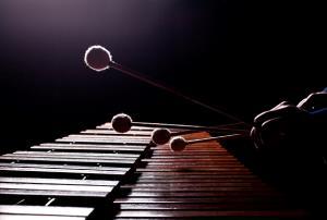 Curso de instrumentación Orff y didáctica de la expresión musical (Edición 1)