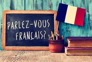 Escuela de actualización lingüística de Lengua Francesa. (Edición 1)