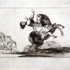 Los Proverbios, 10. El caballo raptor