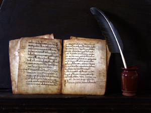 Lengua castellana  y literatura - 6º Primaria