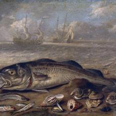 Pescados y marina