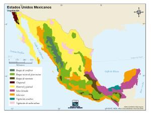 Mapa de vegetación de México. INEGI de México
