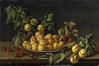 Frutero con albaricoques y guindas