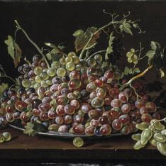 Frutero con uvas blancas y tintas