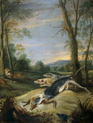 Zorras perseguidas por perros