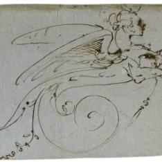 Dibujo para unas volutas con la forma de una arpía
