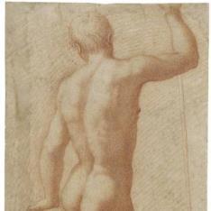 Desnudo masculino visto de espaldas
