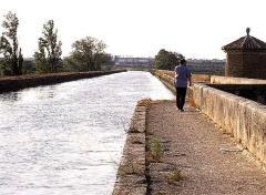 La flecha de agua de Zaragoza
