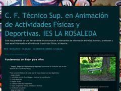 C.F. TÉCNICO SUPERIOR EN ANIMACIÓN DE ACTIVIDADES FÍSICAS Y DEPORTIVAS