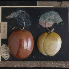 Placa en relieve con dos manzanas