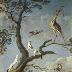 Aves acuáticas y armiños