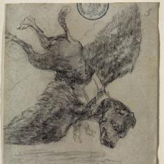 El perro volante. Álbum G, 5
