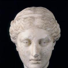 Cabeza de Diana (¿?)
