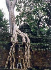 En el templo de 'Tomb Raider'