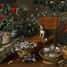 Rincón de jardín con perrito