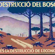 La destrucció del bosc és la destrucció de l'economia