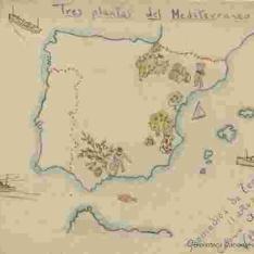 Tres plantas del Mediterráneo