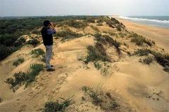 Mar y sierra en la luminosa Huelva