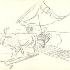Yunta de bueyes arrastrando una barca