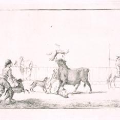 Echando perros al toro