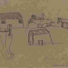 Casas y animales