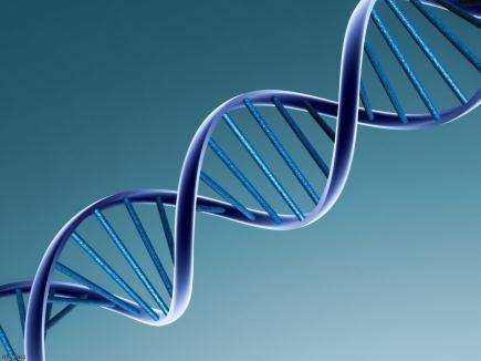 Biología, Genética y Sociedad