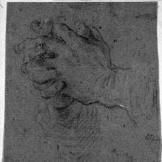 Estudio de manos entrecruzadas en actitud de oración