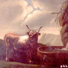 Toro en el campo ante una fuente