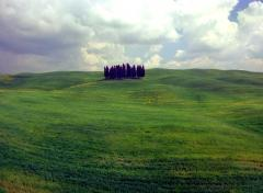 La Toscana, flechazo continuo