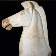 Cabeza de un caballo