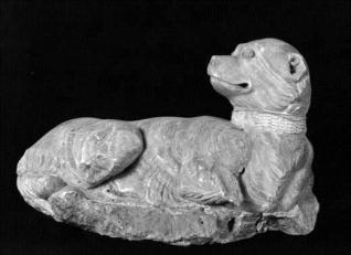 Perro del marqués del Carpio: Rossetto