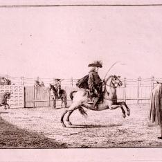 Salida del toro del toril