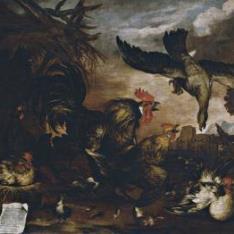 Milano atacando un gallinero