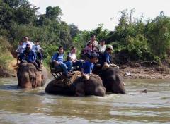 Balanceo a lomos de elefante