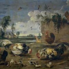 Lucha de gallos