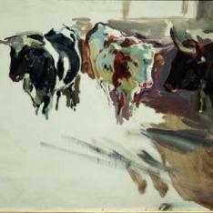 Estudio de toros, Sevilla