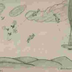 Combate aéreo en las montañas
