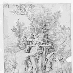 Hércules ó Efectos de la envidia ó Hércules entre la virtud y el placer