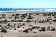 Plan playero en el delta del Ebro