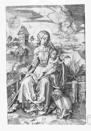 La Virgen del mono