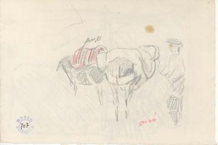Ansotano y dos burros