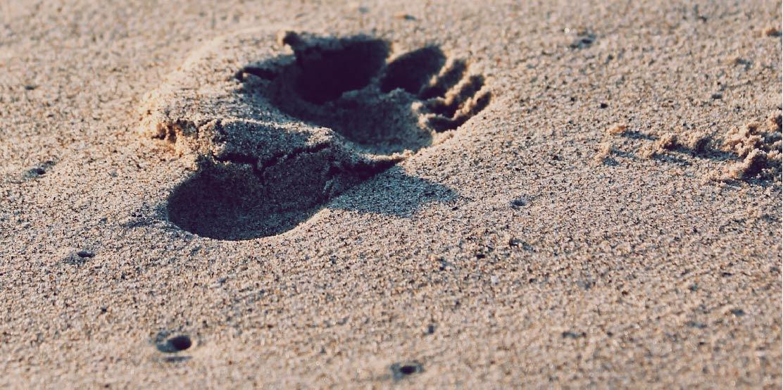 ODS: dónde estamos y el camino por recorrer
