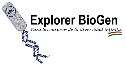 Explorer BioGen