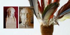 Ancient Greek Literature: Works