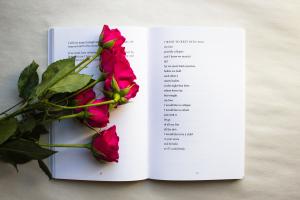 Poesía y literatura