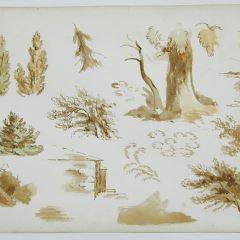 Apuntes de árboles y casas