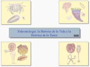 Paleontología la Historia de la Vida y la Historia de la Tierra